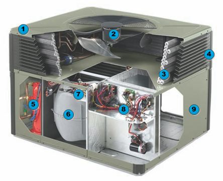 Trane XL14 Package Heat Pump Exposed View