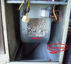Carrier Air Handler and Evaporator Coil